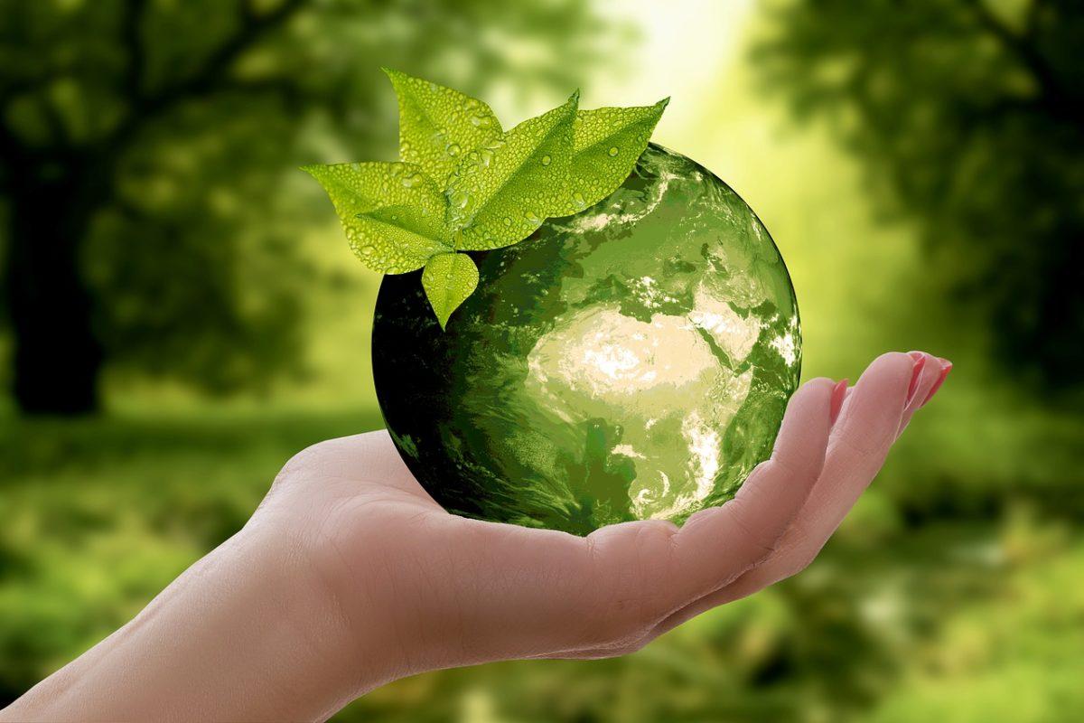 Terre oxygene ecologie